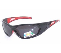 Polarized Plastic Sunglasses